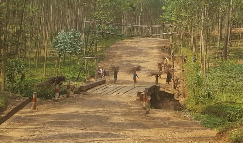 I bambini che raccolgono la legna