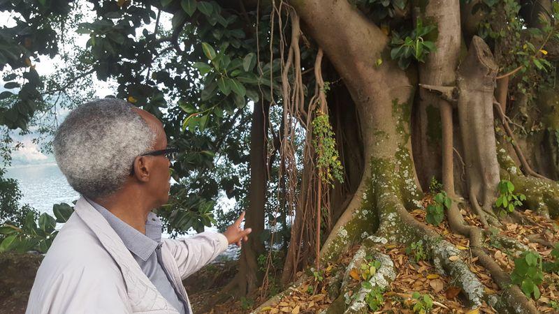 Jean Baptiste mi mostra un albero le cui radici crescono dall'alto verso il basso