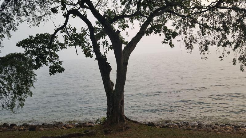 Una pace e il rumore della onde che invitano alla meditazione e al silenzio interiore